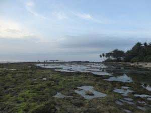 Pantai Lagoon Pari