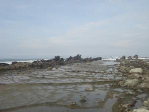 karang pemecah ombak