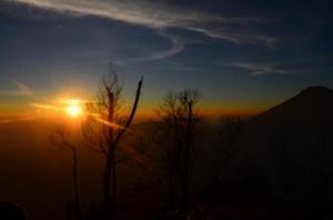 sumrise (3)