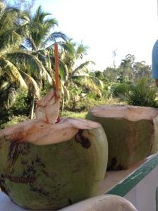 air kelapa josssss